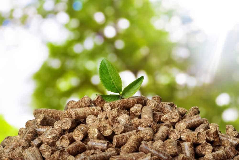 Biomass Boiler Pellets